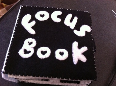 新生児の視力発達、手作り焦点ブック